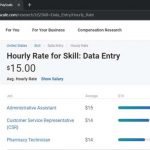 How much do you need to pay for data entry?